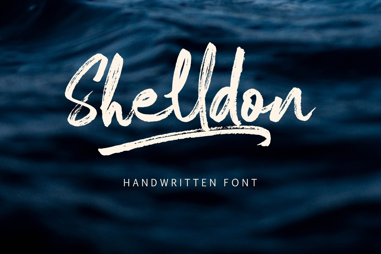 Shelldon Brush Script Font Demo