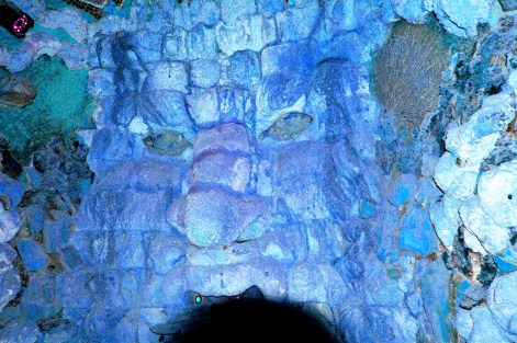 Grotto at Leeds Castle- DSC_0686