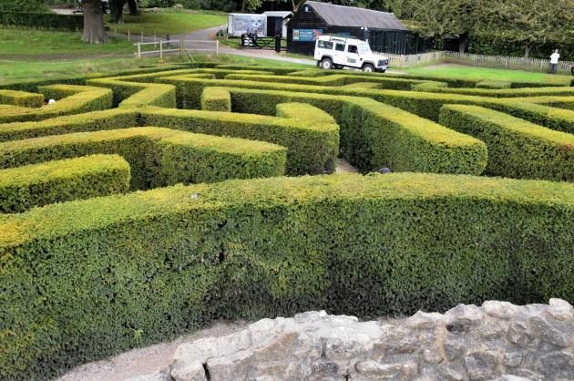 Maze at Leeds Castle