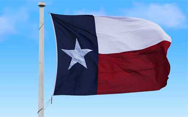 Texas Flag - Copyright: Xzelenz Media