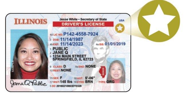 Illinois Driver License