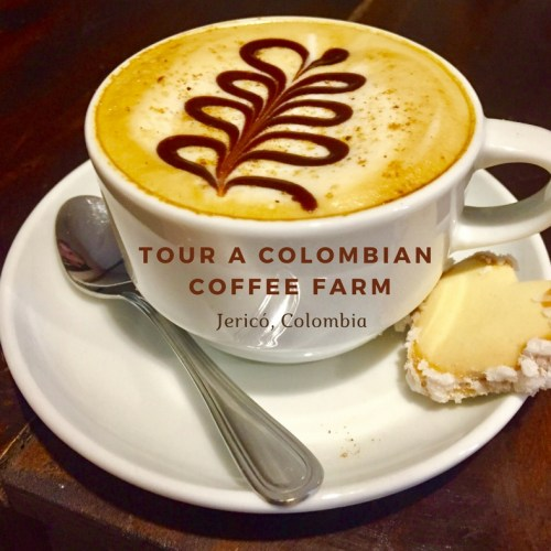 tour a colombian coffee farm