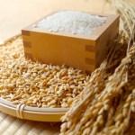 ななつぼし(マツコCM)の米の価格や炊き方は?味の口コミ・評判!