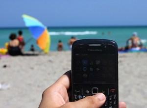 blackberry on the beach