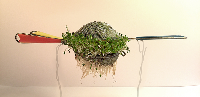 Human Nature Strainer, 2016. Freedom Baird. Vintage strainers, steel wire, alfalfa sprouts.