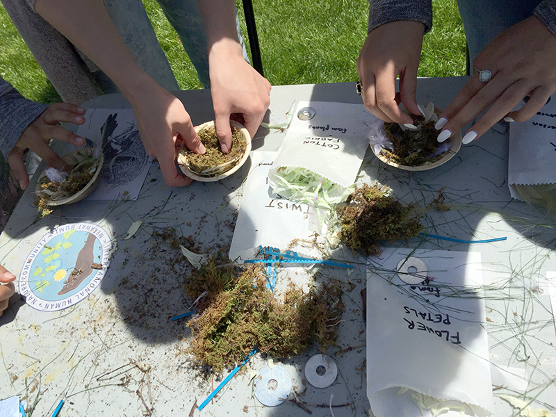 Human + Nature Nest Building, participatory art event at Fresh Pond Day, May 20, 2017, Cambridge, MA. Event created by Freedom Baird, nests created by visitors. Nest materials: grass, hair, jute, sisal, hemp, flower petals, feathers, paper twist ties, moss and cotton.