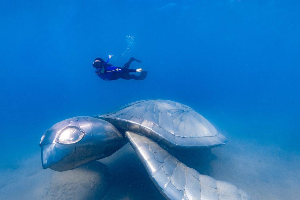 Freedom Exclusive Charters | Ngaro Underwater Sculptures Trail | Ngaro Underwater Sea Sculptures | Underwater Sea Sculptures | How to visit Sea Sculptures Whitsundays
