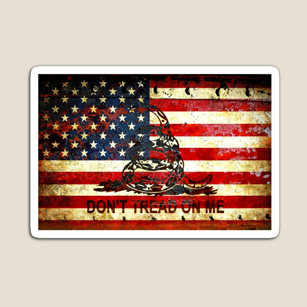 American Flag And Viper On Rusted Metal Door - Don't Tread On Me magnet