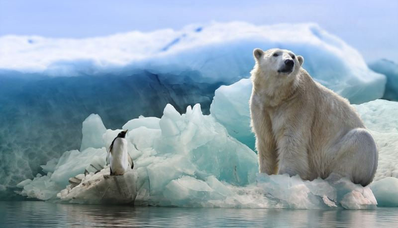 New Study Destroys Climate Change Activists, Should We Be Concerned With An Ice Age Now?