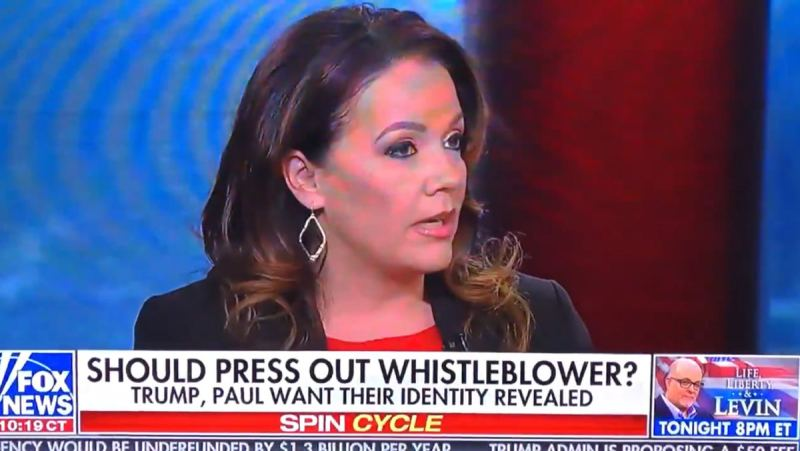 EPIC! Mollie Hemingway Shocks Fox News Panel Stunned After Dropping Whistleblower's Name on Live Broadcast (VIDEO)