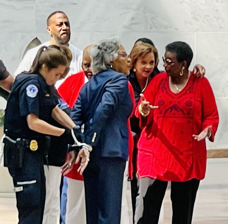 Democrat US Representative Among Nine Arrested by Capitol Police
