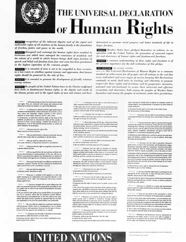 Image of the Entire Universal Declaration of Human Rights