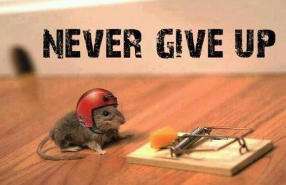Never Give Up!!! A Life Lesson from the Yankees