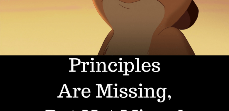 Principles Are Missing, But Not Missed By Anyone!