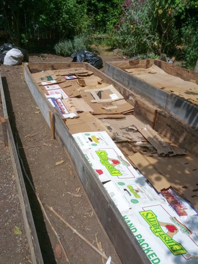 All in Common Garden - preparing beds