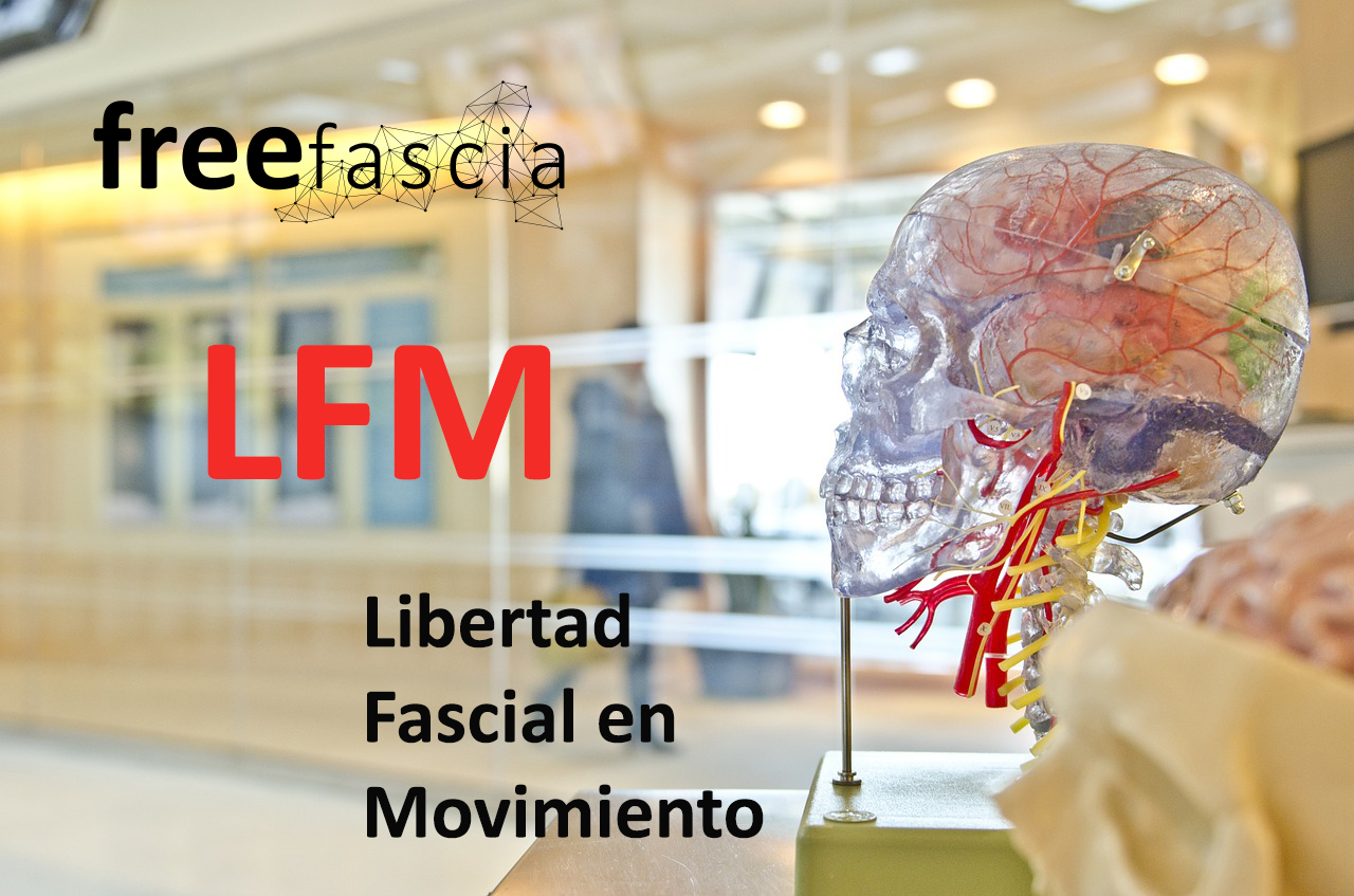 LFM_Free Fascia
