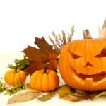 Studio shot of Halloween pumpkins and autumn leaves arranged on white background.