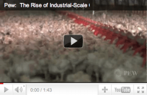 PEW Report on The Chicken Industry