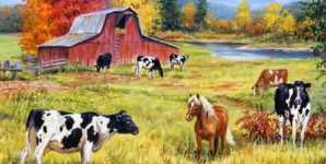Six Reasons Why the Natural Order Argument Does Not Justify Meat Eating