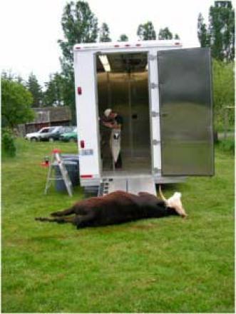 mobile slaughterhouse photo