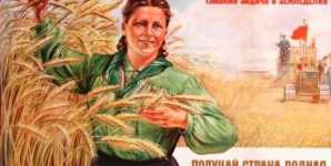 Wheat and the Marketer's Narrative of Good and Evil