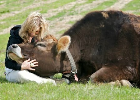 help farm animals by sharing personalized images