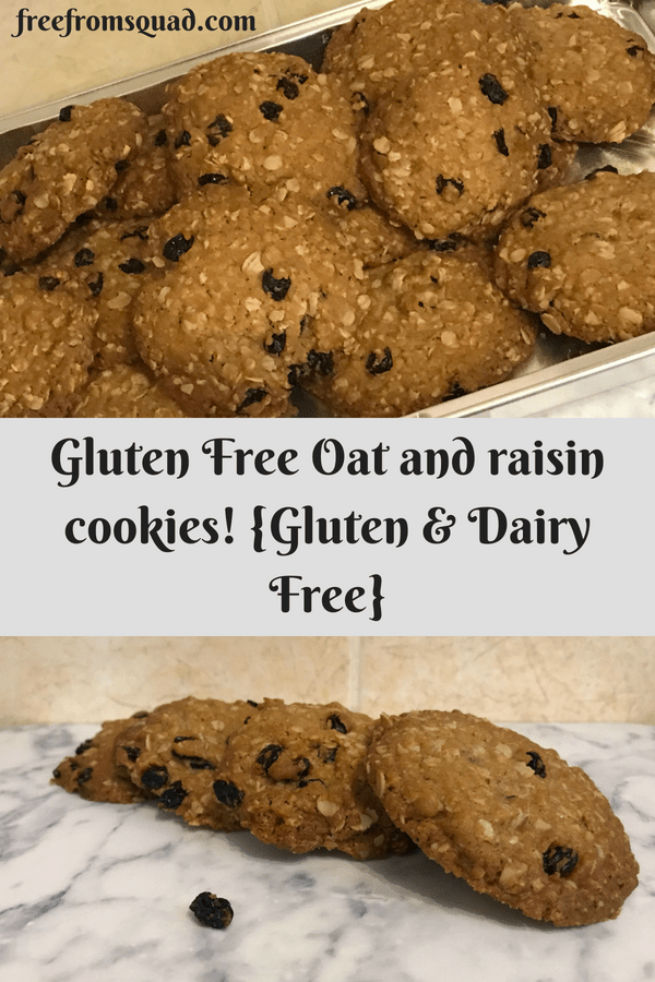 Gluten Free Yummy Oat and Raisin Cookies {Dairy & Gluten Free}