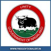 Nagaland Govt Jobs