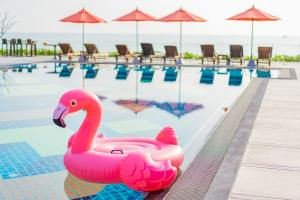 Flamingo float around swimming pool in hotel resort with umbrella and chair in hotel resort