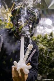 _Skunk Dunk Mask 04