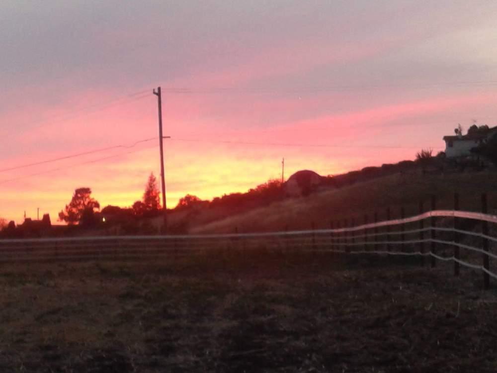 Sunset Over Pasture
