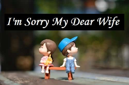 Sorry-Shayari-Msg-Sms-For-Wife-In-Hindi (2)