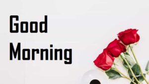 प्यार-भरी-गुड-मॉर्निंग-शायरी-हिंदी (1)