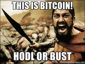 """""""HODL"""" - A popular mistyping of """"HOLD"""", generally a simple an effective strategy with bitcoin."""