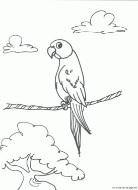 Print out bird Parrots coloring pages for kids