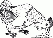 Farm chickens Eating coloring in pictures to print out