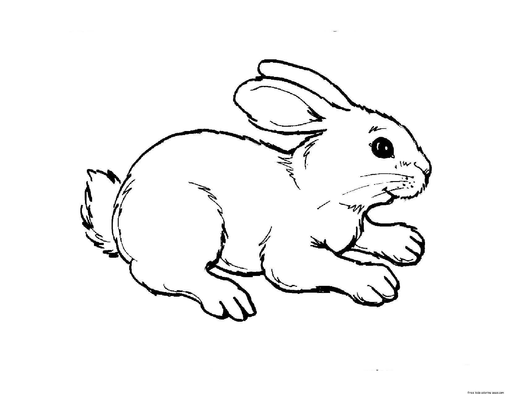Printable Kids Coloring Pages Animal Rabbit