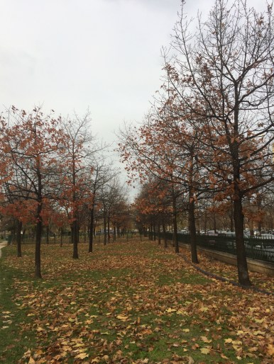 Autumn park in Bucharest