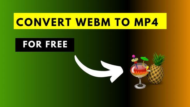 How to Convert a WebM video File to Mp4 Using HandBrake