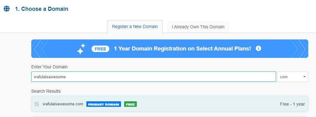 Enter your domain name