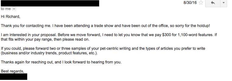 niche expert in content writing