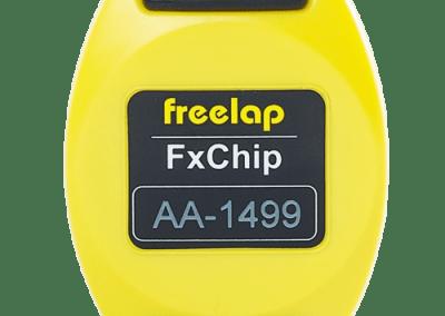 FX Chip