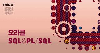 [열혈강의] 오라클 SQL & PL/SQL