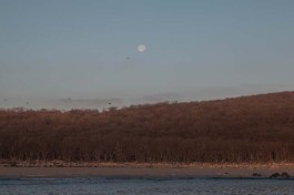 Moonset to the west