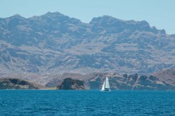 Moon Drifter en route to Monserrat with the WCM Baja Rally