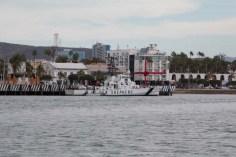 The Sea Shepherd's Farley Mowat