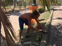 Brian taking a whack at some coconuts on a walk back from Secret Beach
