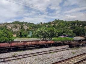 Scenery along the tracks