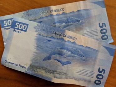 Cool new pesos