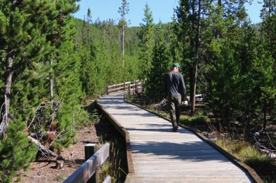 One of many boardwalks leading to yet another geothermal feature